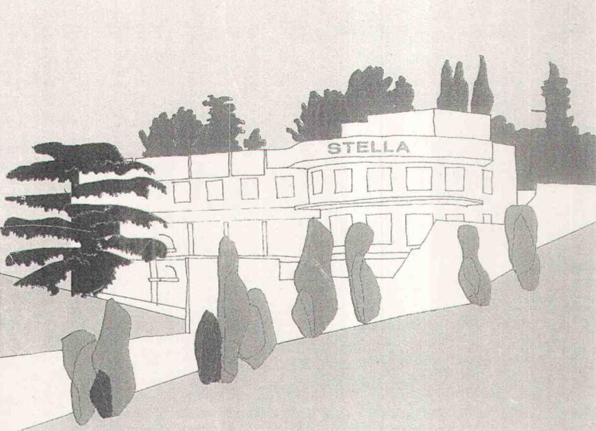Patrimonialización de la Arquitectura Moderna. La piscina club Stella deMadrid